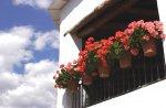 2020 - LA ALPUJARRA -(2 Dias) Escapada de Fin de Semana - Hotel Rural / Régimen de Alojamiento y Desayuno