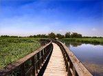 2020 - DE LOS VINOS DE LA MANCHA & PN DE LAS TABLAS DE DAIMIEL -(4 Dias) Ruta por Paradores de Turismo / Régimen Alojamiento y Desayuno